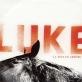pochette - Comme un homme - Luke